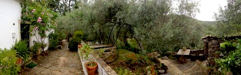 a view of our garden in the hills of Carrasqueiro